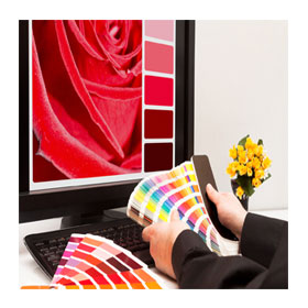 colour consultant matching colours